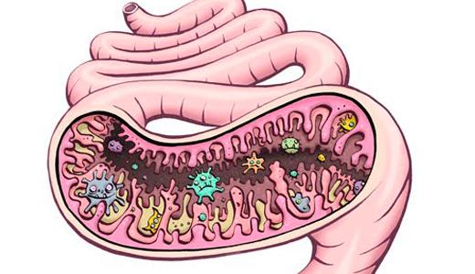 Что такое дисбактериоз в моче