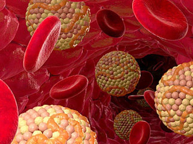 холестерин в крови 9 что делать