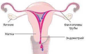 Выделения розового цвета у женщин перед месячными