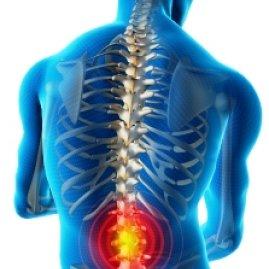 Wday список упражнений для лечения позвоночника
