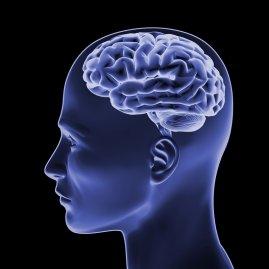 Отек головного мозга можно ли выжить